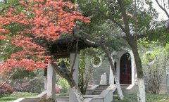 Chapel of Gulou Campus